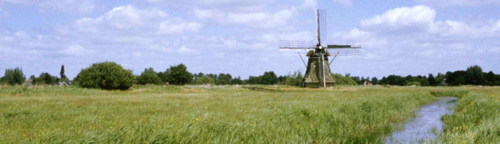 De Fryske Rie